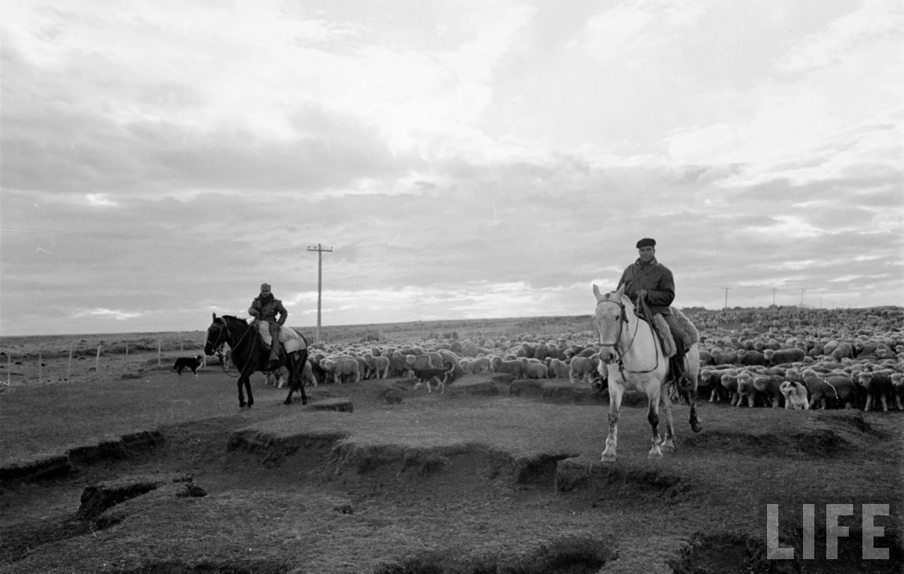 Enterreno - Fotos históricas de chile - fotos antiguas de Chile - Gauchos en la Patagonia, 1950