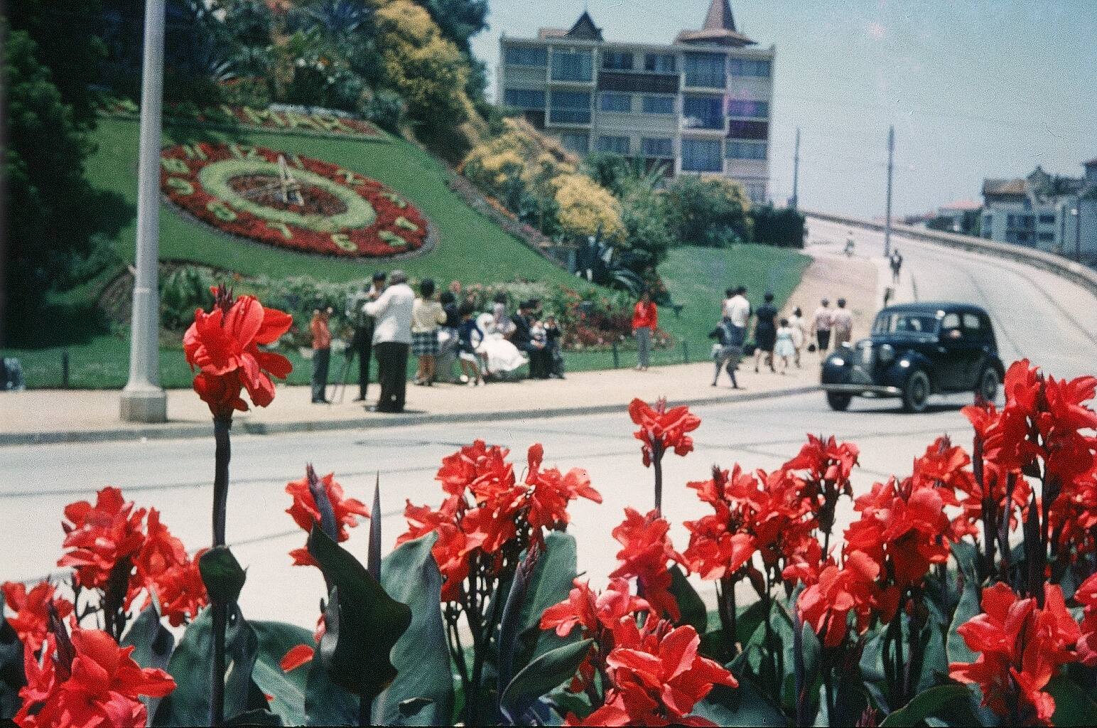 Enterreno - Fotos históricas de chile - fotos antiguas de Chile - Reloj de Flores de Viña del Mar en 1962