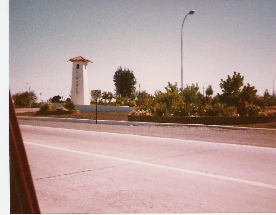 Enterreno - Fotos históricas de chile - fotos antiguas de Chile - Entrada a Linares desde Ruta 5 en 1982