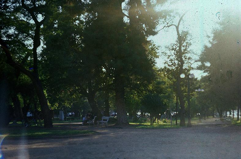 Enterreno - Fotos históricas de chile - fotos antiguas de Chile - Parque Bellavista en 1989