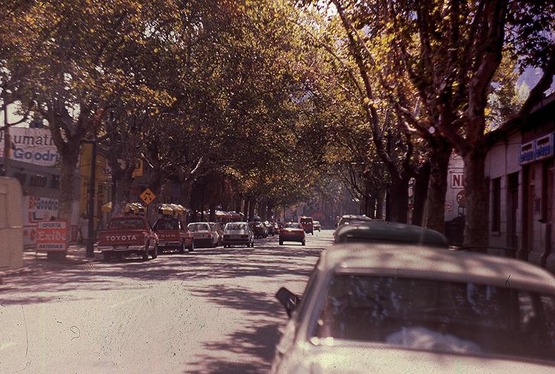 Enterreno - Fotos históricas de chile - fotos antiguas de Chile - Calle del Barrio Bellavista en 1989