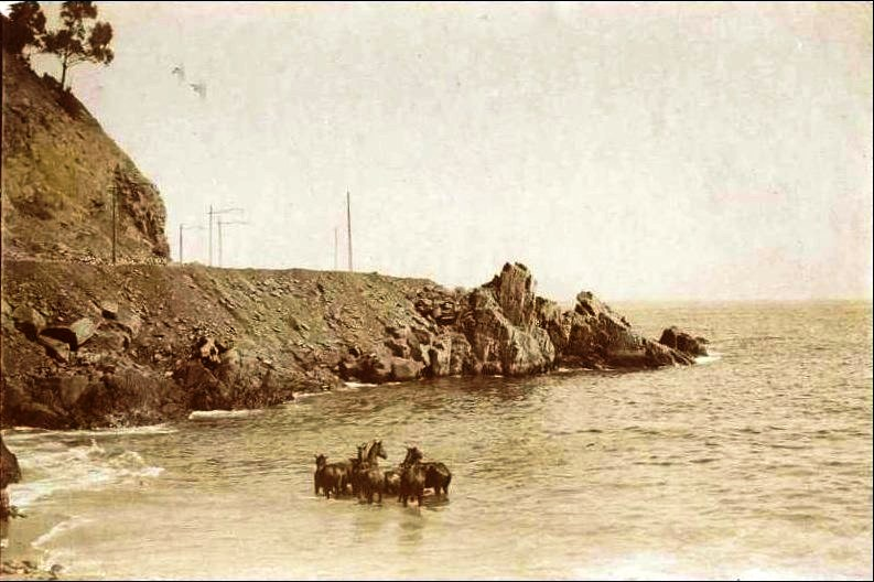 Enterreno - Fotos históricas de chile - fotos antiguas de Chile - Caleta El Membrillo en 1905