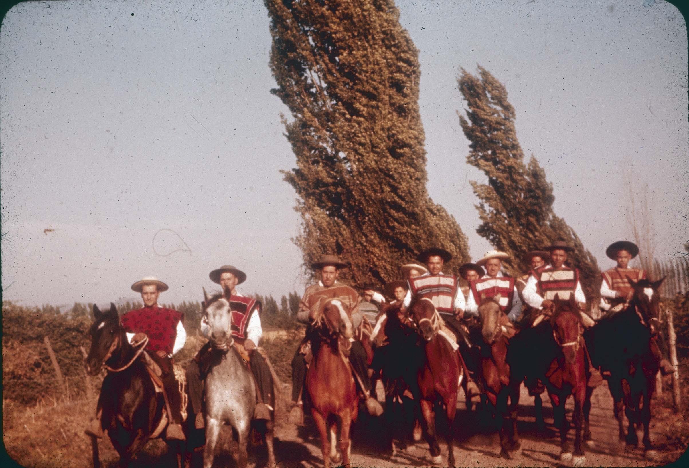 Enterreno - Fotos históricas de chile - fotos antiguas de Chile - Huasos a caballo en Curicó en los 60