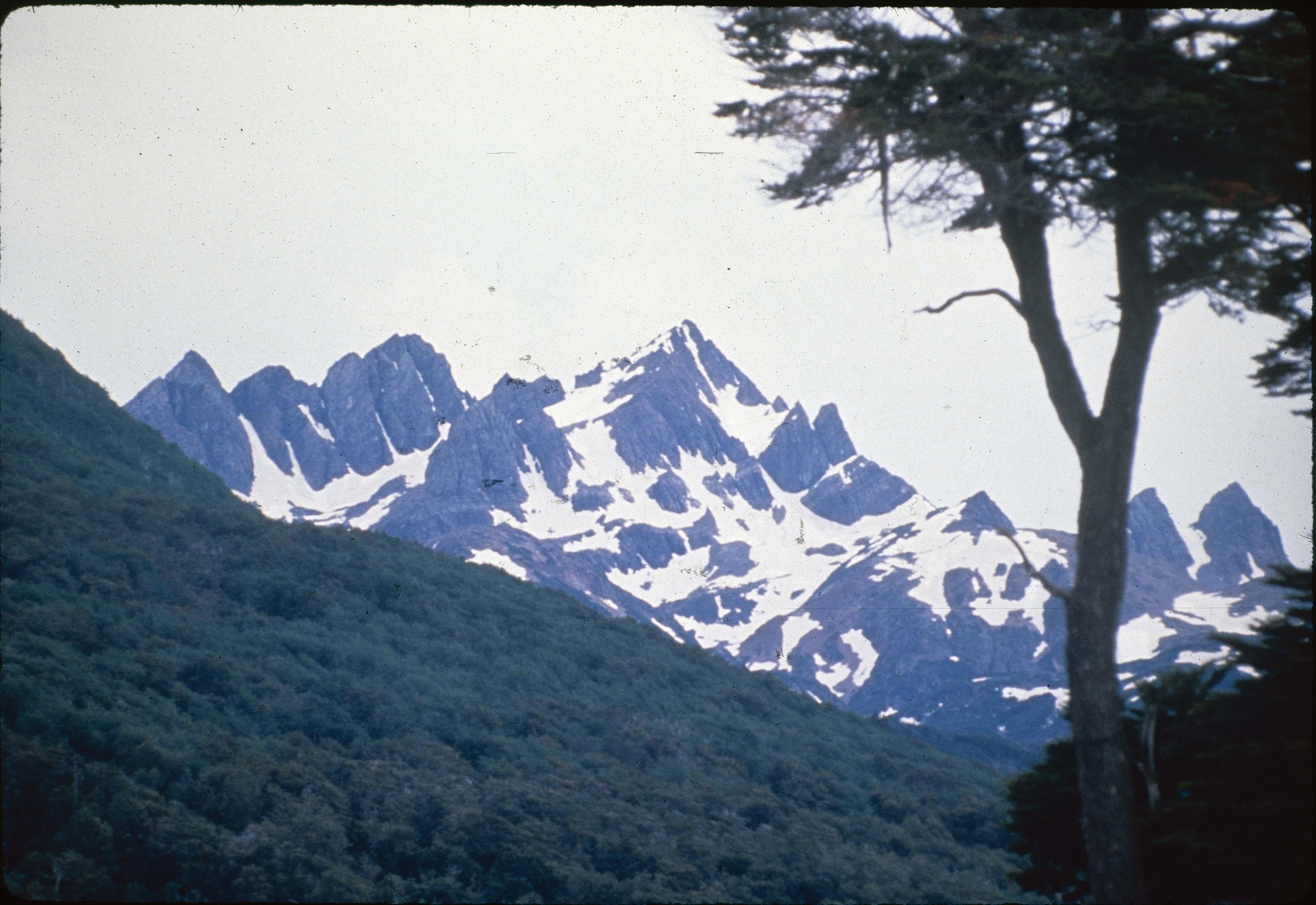 Enterreno - Fotos históricas de chile - fotos antiguas de Chile - Extremo Sur de Chile en los 90s