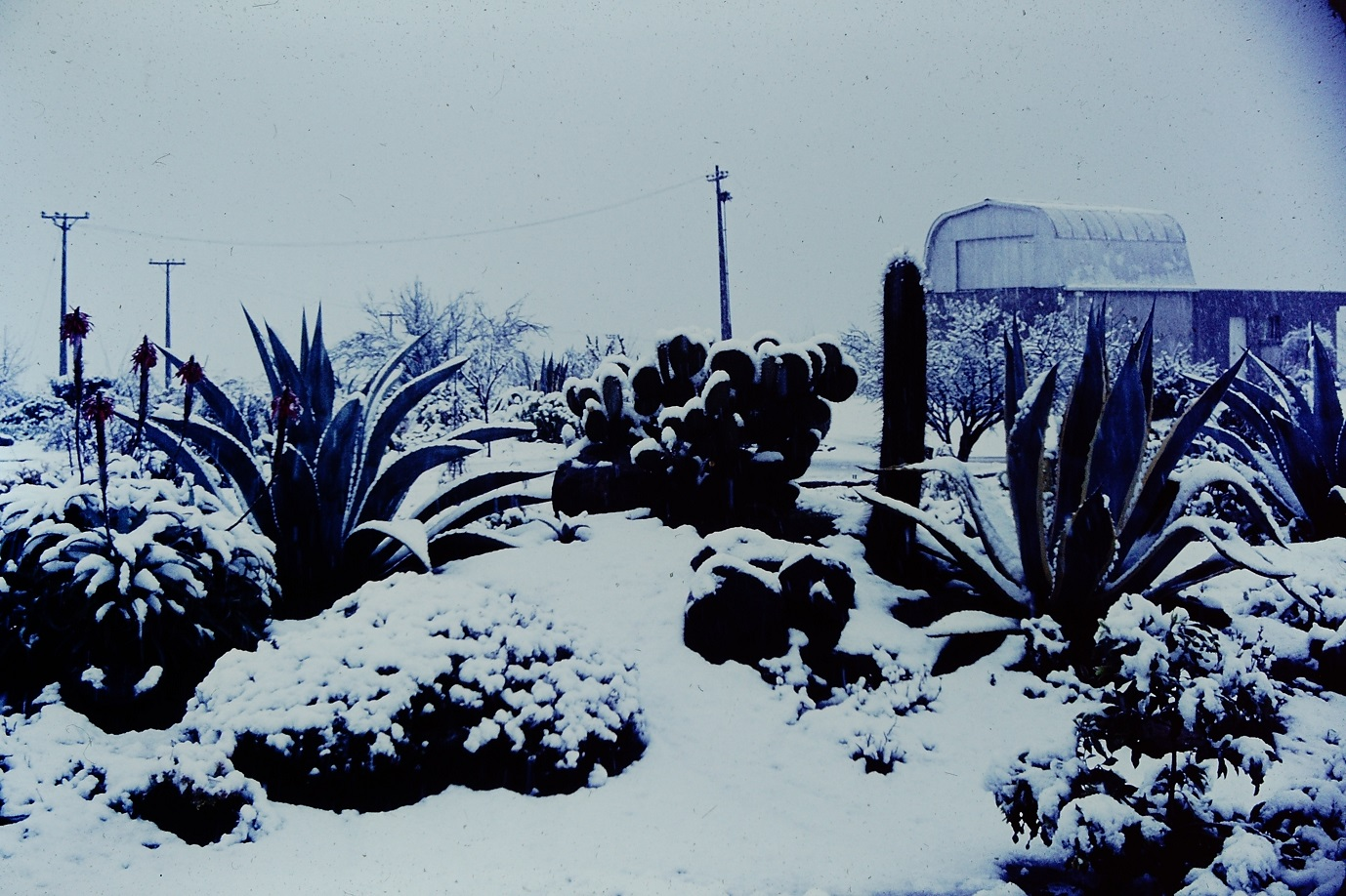 Enterreno - Fotos históricas de chile - fotos antiguas de Chile - Nevada en el Observatorio Cerro Calán en los 60s