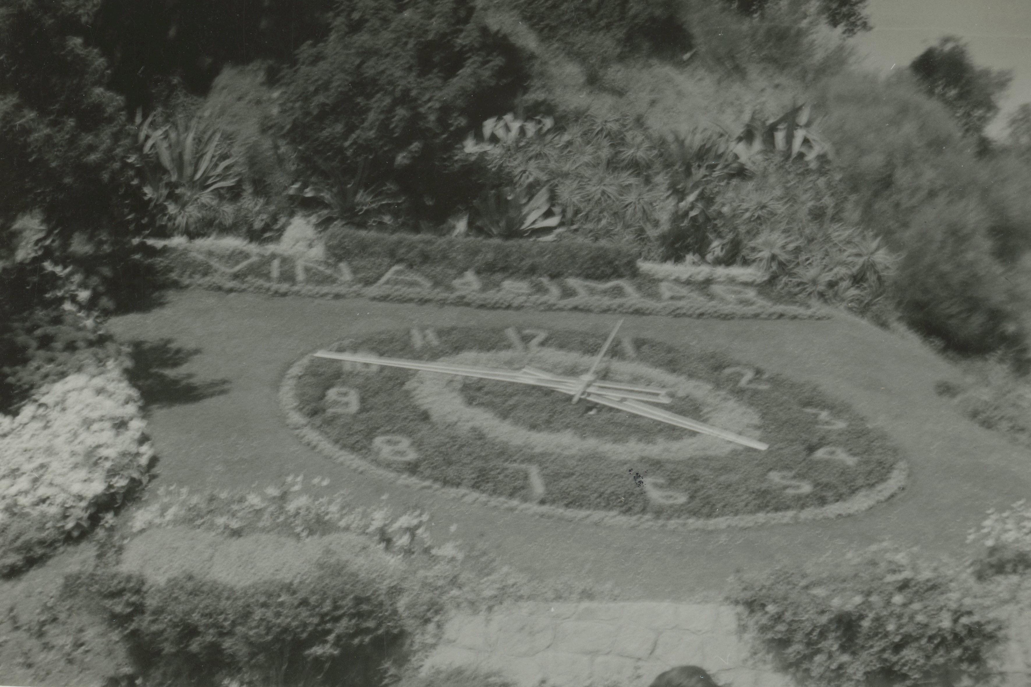 Enterreno - Fotos históricas de chile - fotos antiguas de Chile - Reloj de Flores, Viña del Mar en 1969