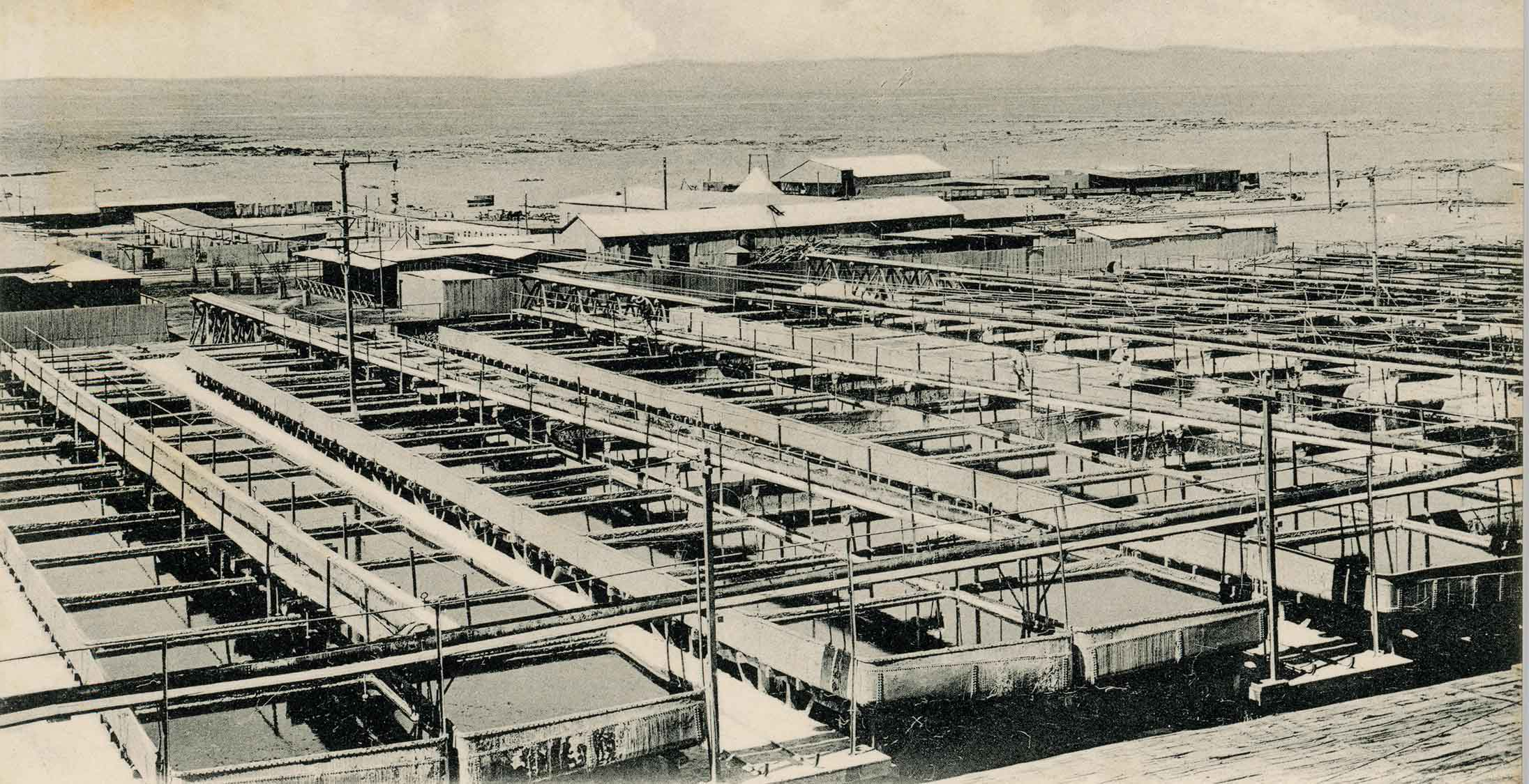 Enterreno - Fotos históricas de chile - fotos antiguas de Chile - Oficina Agustín Edwards de Antofagasta ca. 1920