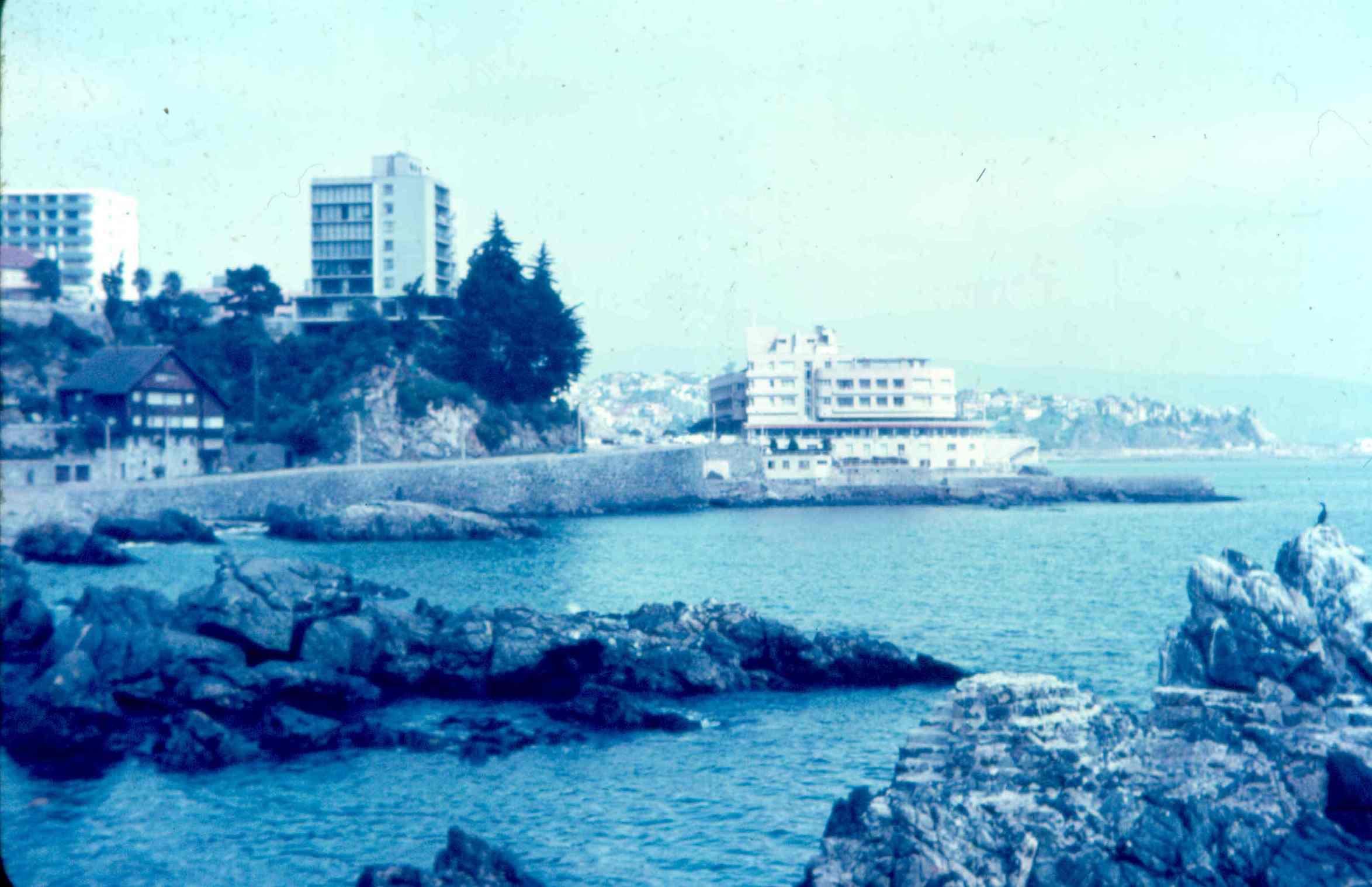 Enterreno - Fotos históricas de chile - fotos antiguas de Chile - Viña del Mar en 1965