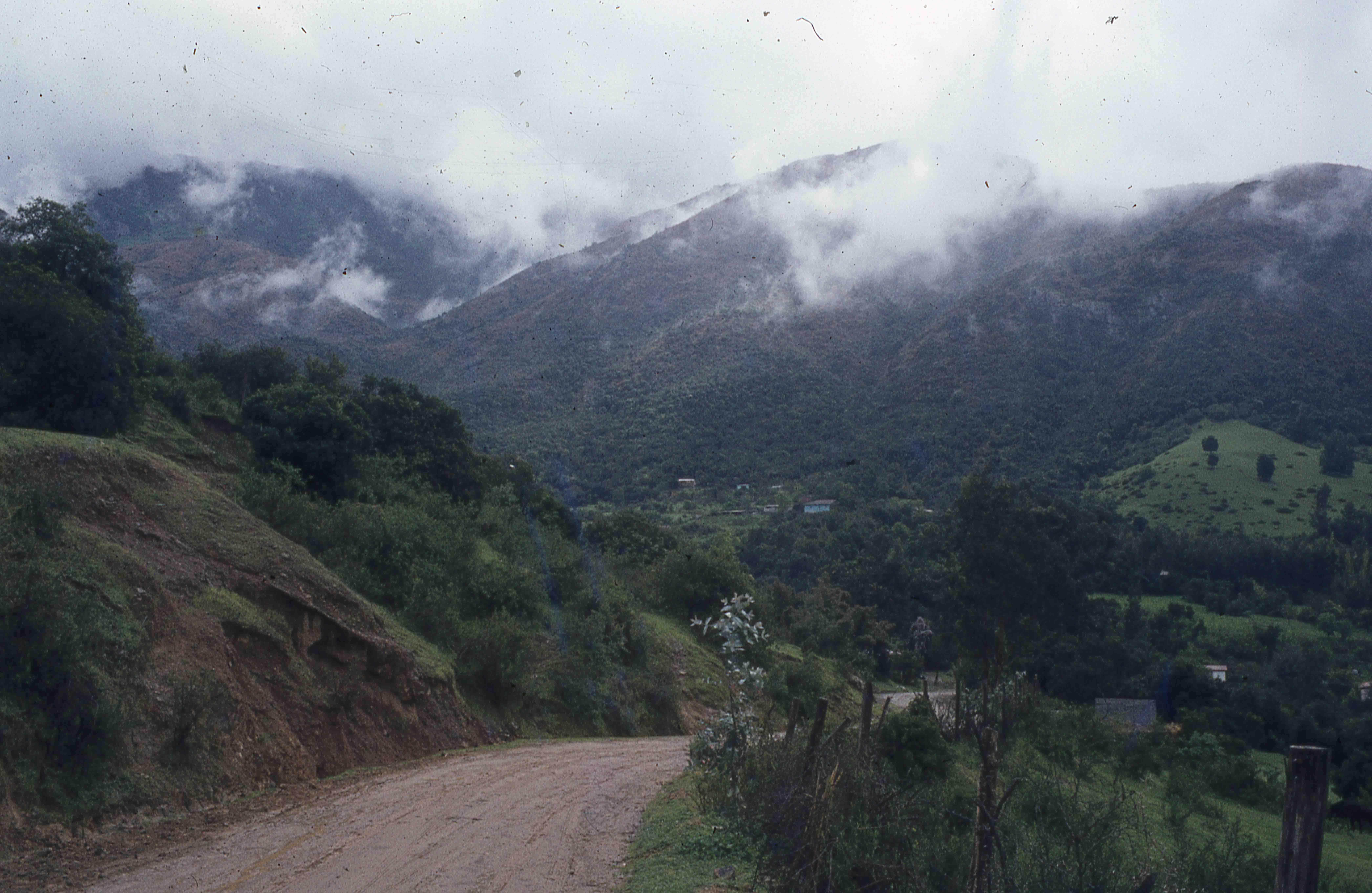 Enterreno - Fotos históricas de chile - fotos antiguas de Chile - Sector Parque Nacional la Campana en los 70s