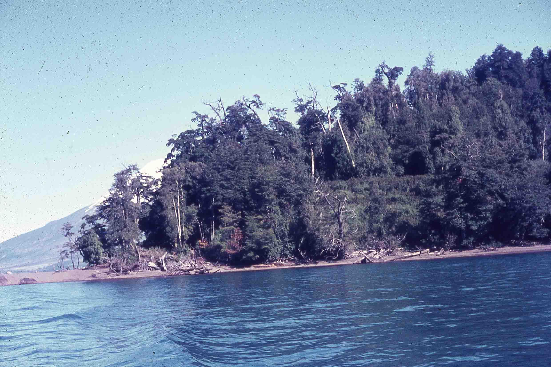 Enterreno - Fotos históricas de chile - fotos antiguas de Chile - Lago Todos Los Santos en 1980