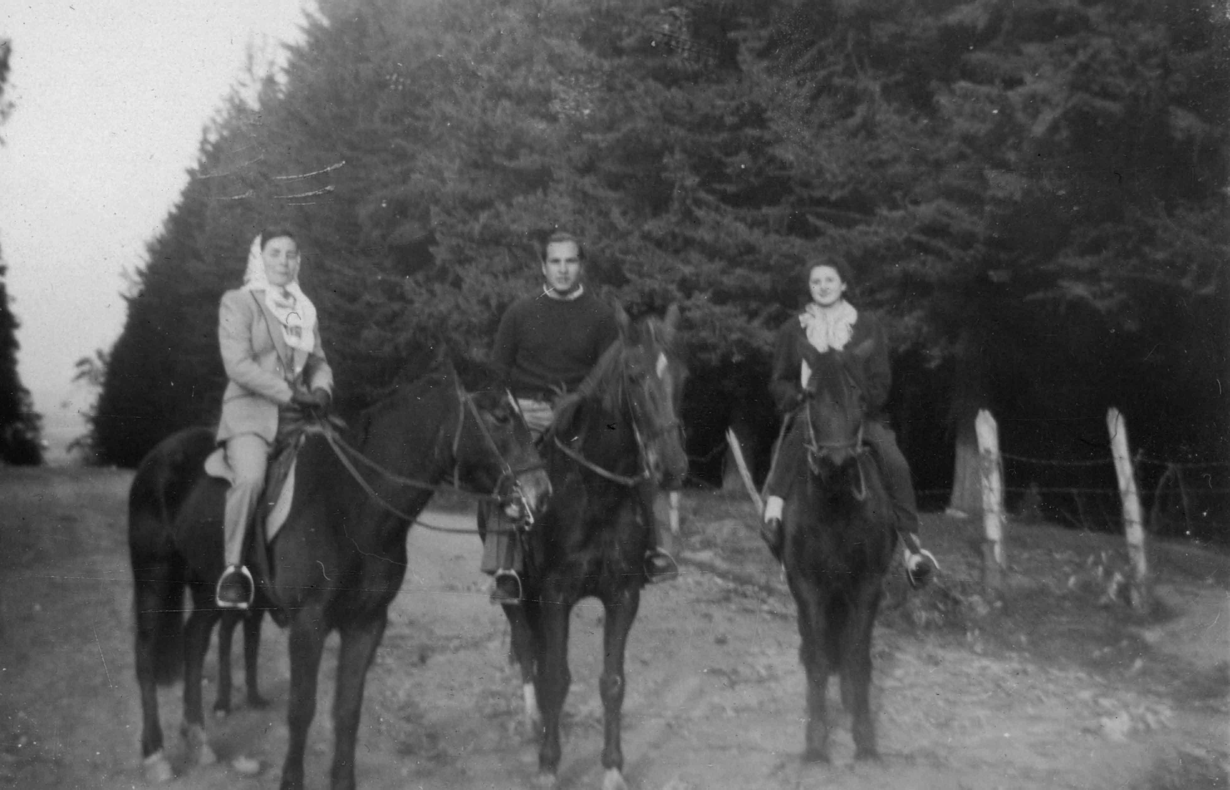 Enterreno - Fotos históricas de chile - fotos antiguas de Chile - Fundo Las Mercedes en 1947