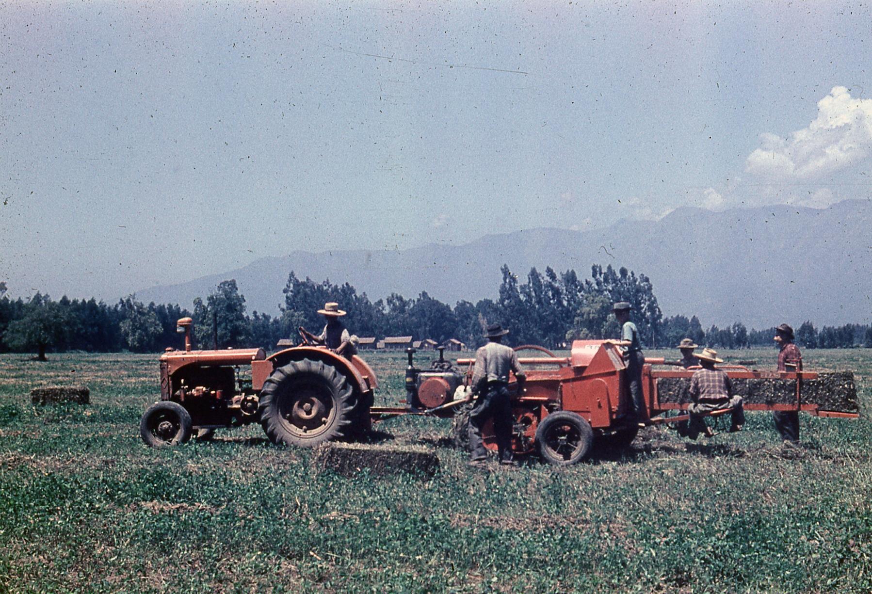 Enterreno - Fotos históricas de chile - fotos antiguas de Chile - Tractores en el Fundo La punta, 1953