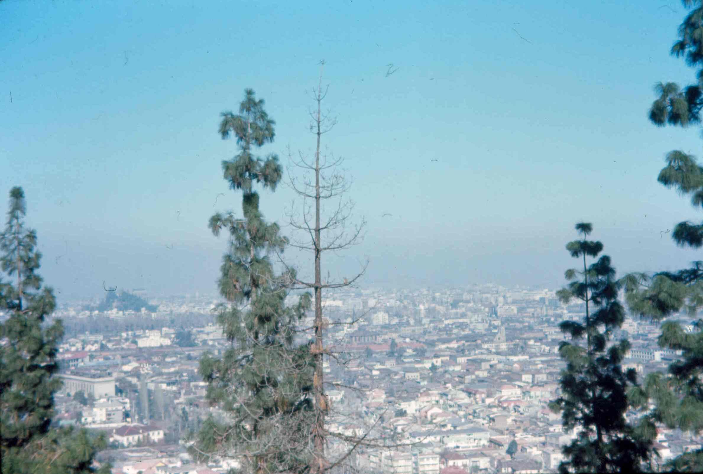 Enterreno - Fotos históricas de chile - fotos antiguas de Chile - Panorama de Santiago en 1969