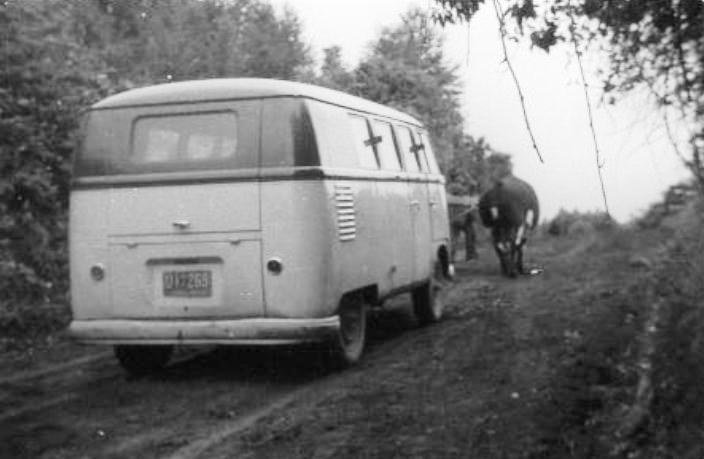 Enterreno - Fotos históricas de chile - fotos antiguas de Chile - Camino Panguipulli-Calafquén en 1962
