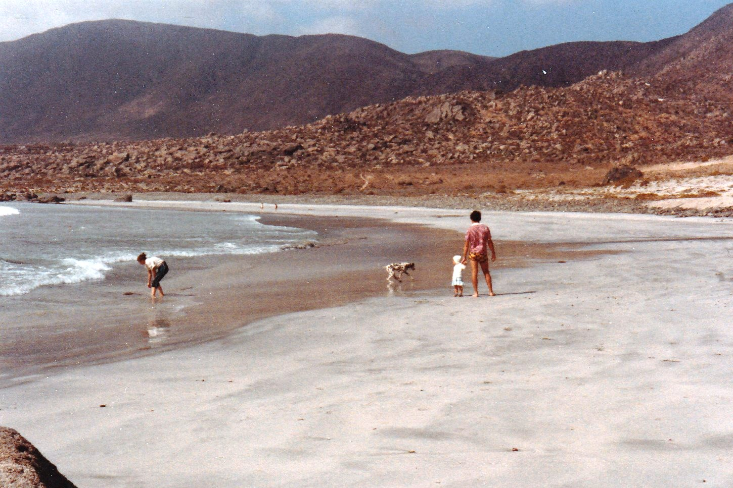 Enterreno - Fotos históricas de chile - fotos antiguas de Chile - Las Tacas en 1984