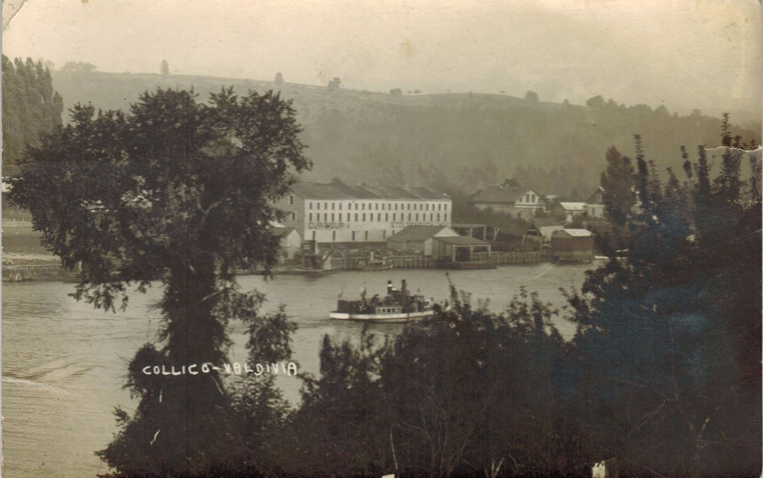 Enterreno - Fotos históricas de chile - fotos antiguas de Chile - Collico, Valdivia en 1925