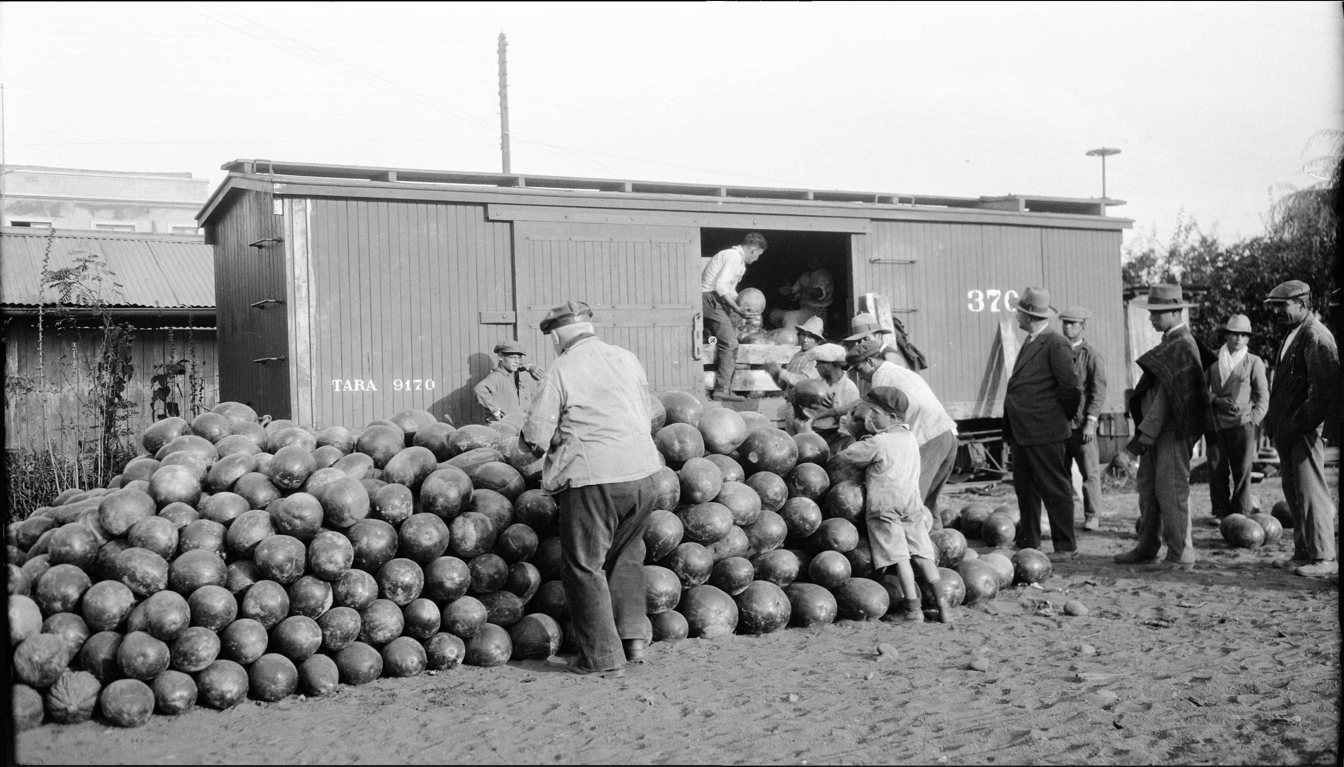 Enterreno - Fotos históricas de chile - fotos antiguas de Chile - Cargamento de sandías, Rancagua, 1930