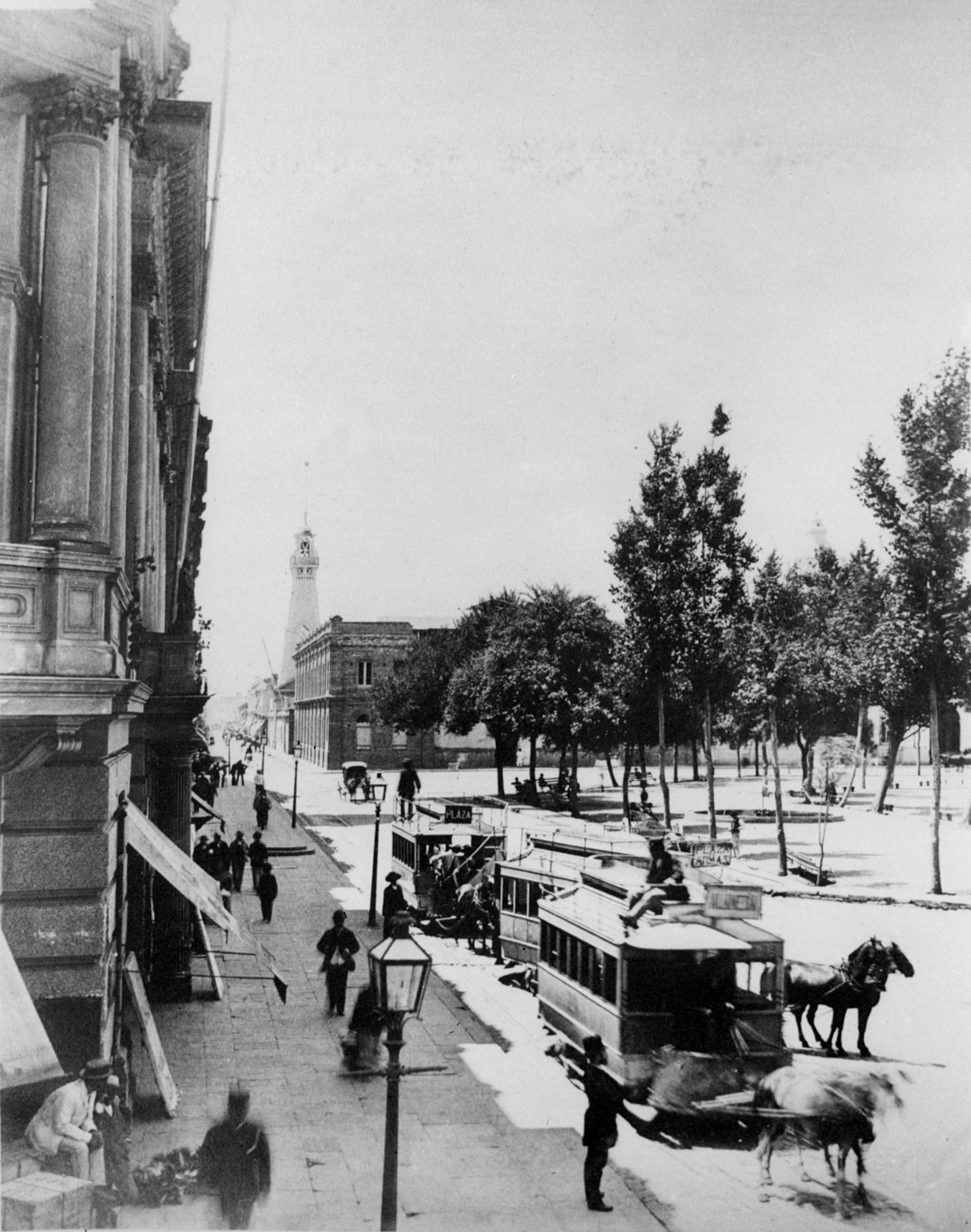 Enterreno - Fotos históricas de chile - fotos antiguas de Chile - Plaza de Armas de Santiago en 1895