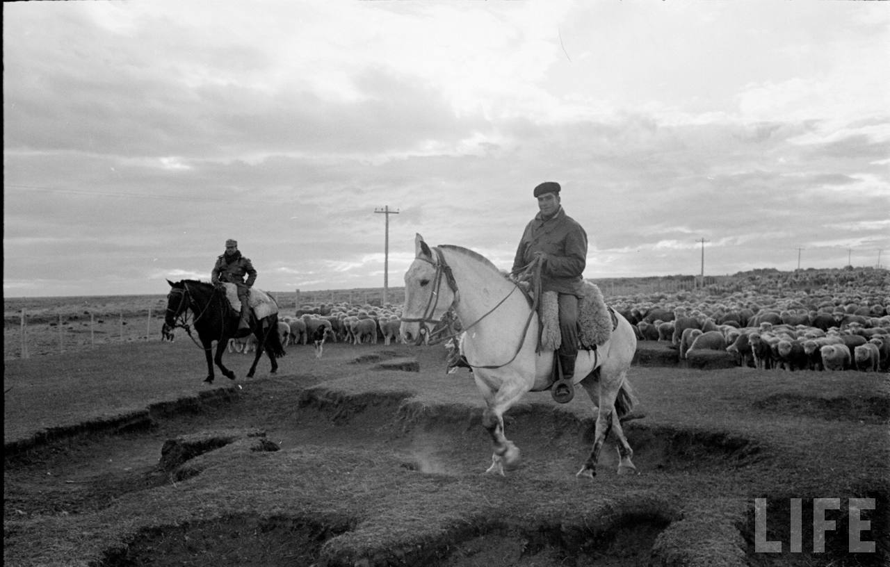 Enterreno - Fotos históricas de chile - fotos antiguas de Chile - Gauchos en la Patagonia, 1950