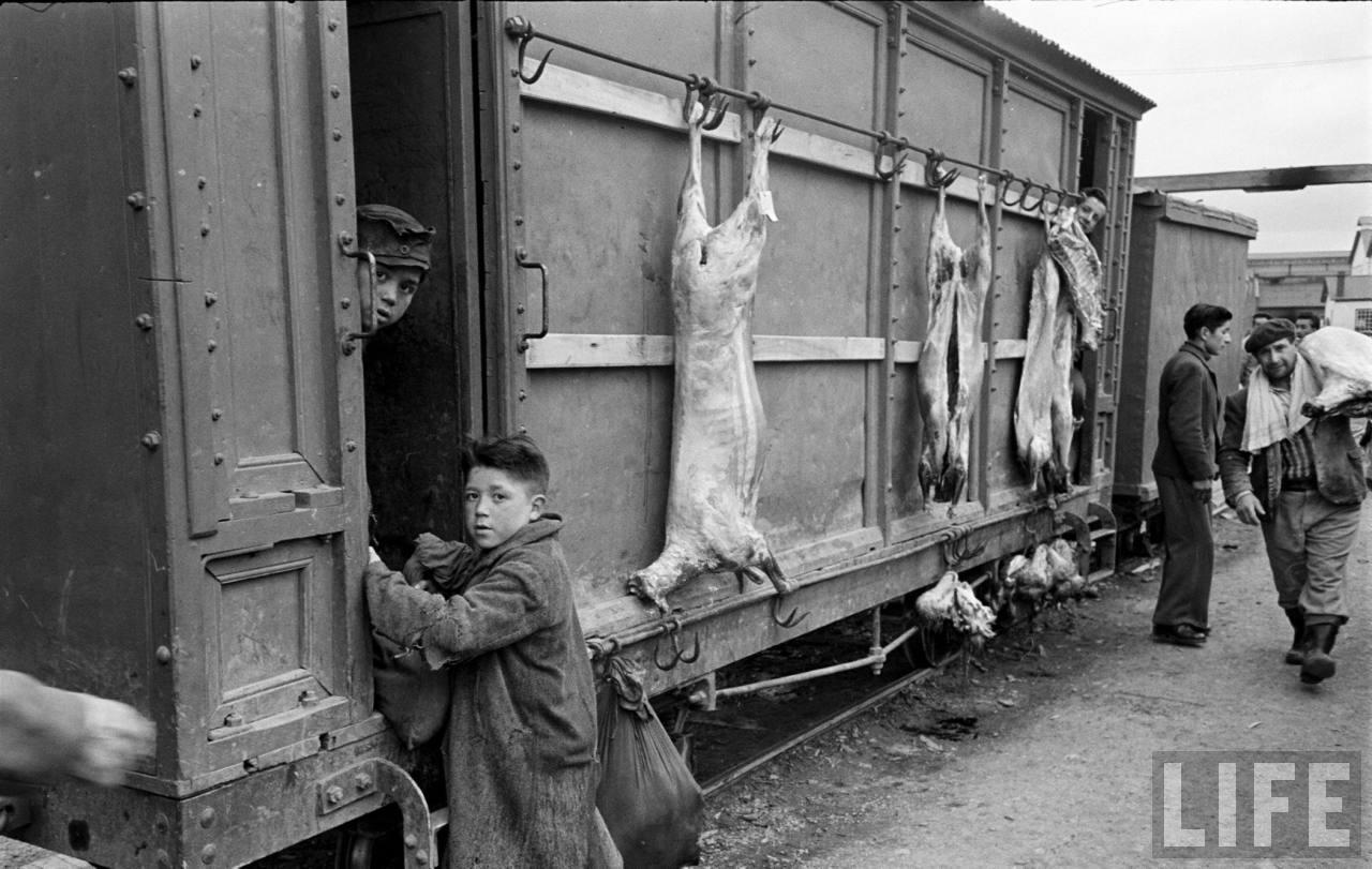 Enterreno - Fotos históricas de chile - fotos antiguas de Chile - Tren en frigorífico Puerto Bories, 1950