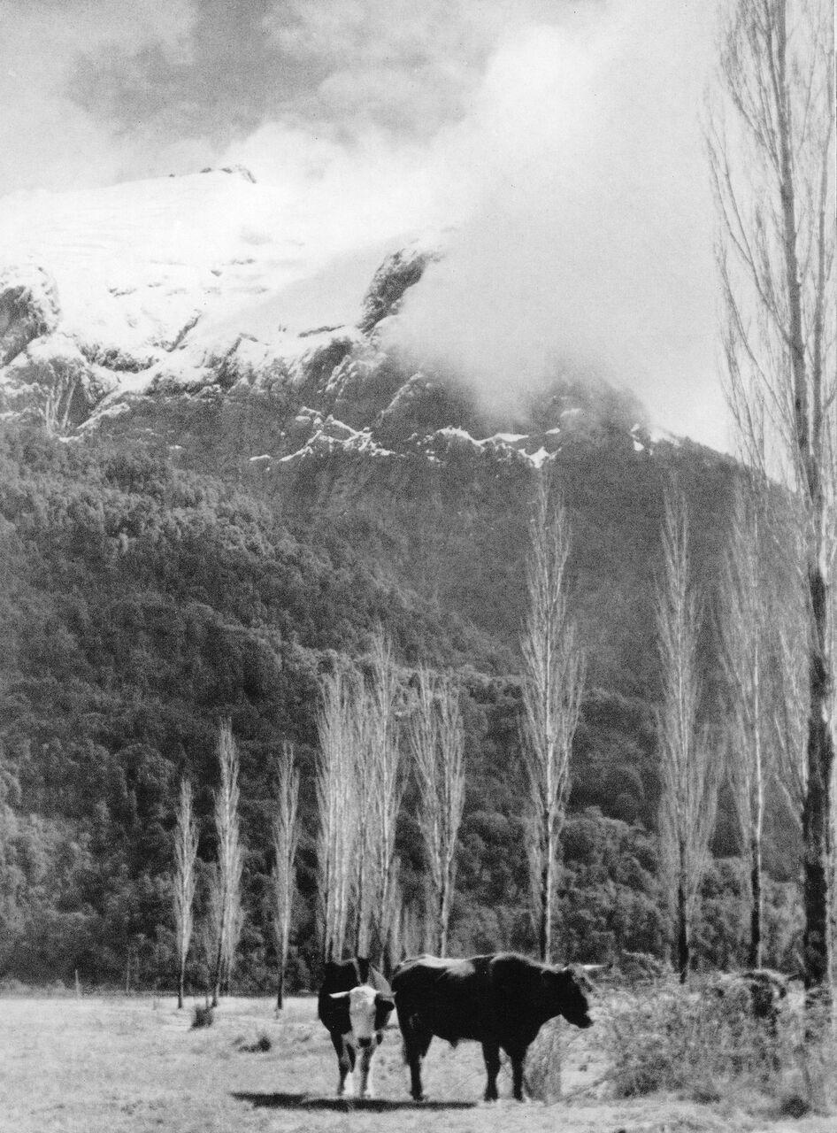 Enterreno - Fotos históricas de chile - fotos antiguas de Chile - Perla