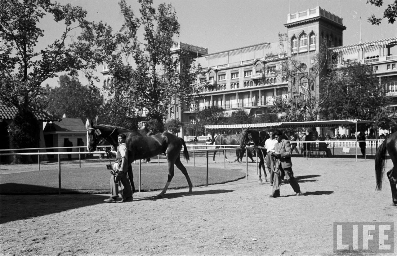 Enterreno - Fotos históricas de chile - fotos antiguas de Chile - Club hípico, 1950