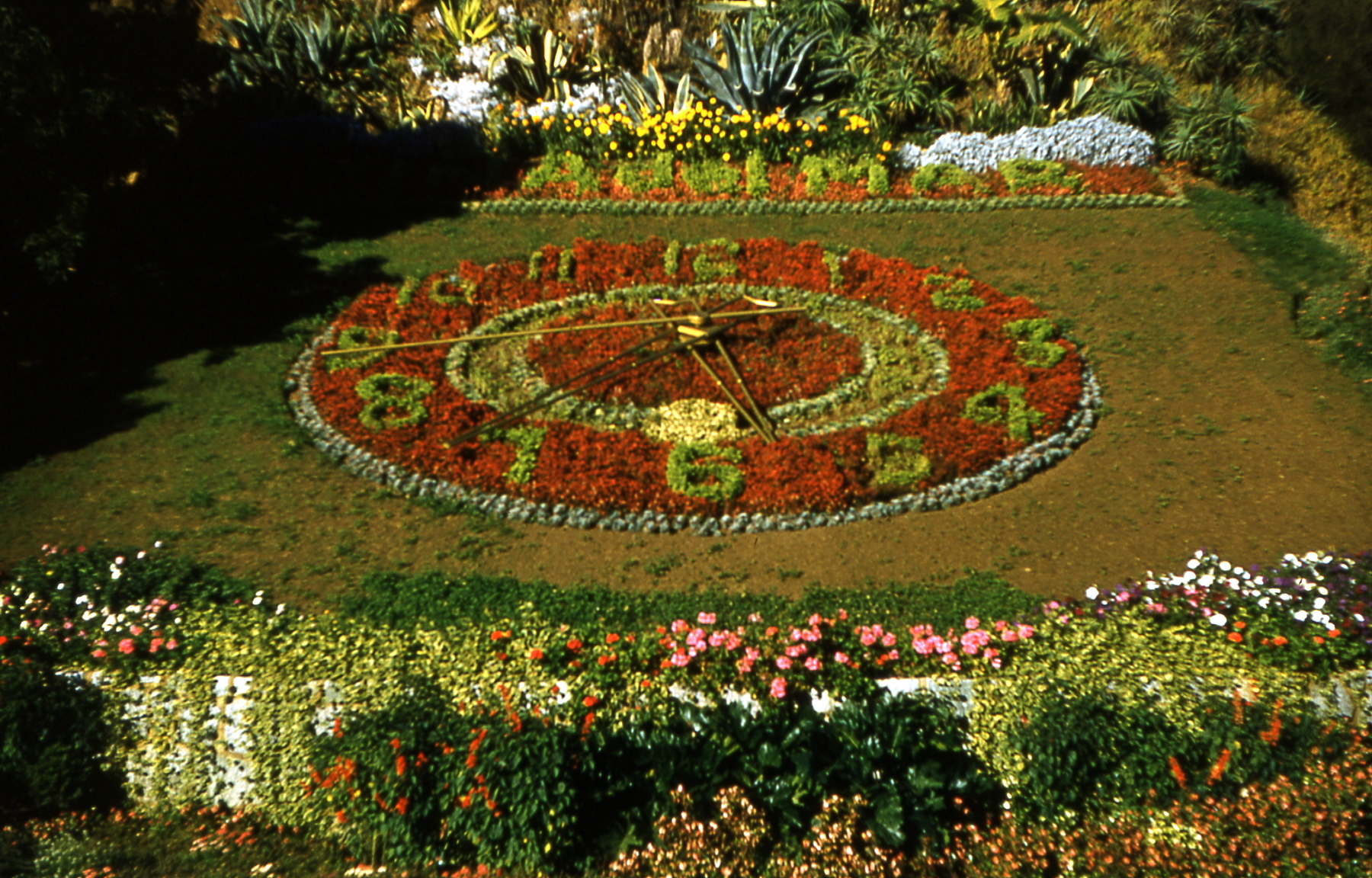 Enterreno - Fotos históricas de chile - fotos antiguas de Chile - Reloj de Flores de Viña del Mar en 1963