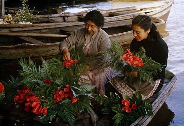 Enterreno - Fotos históricas de chile - fotos antiguas de Chile - Vendedoras de flores en 1960