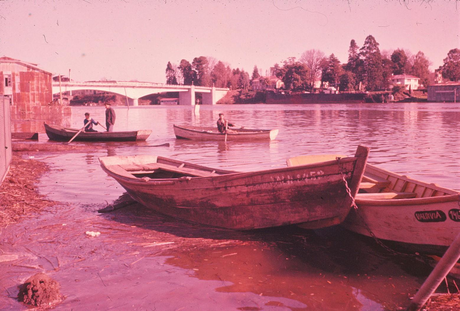 Enterreno - Fotos históricas de chile - fotos antiguas de Chile - Post Terremoto de Valdivia en 1960