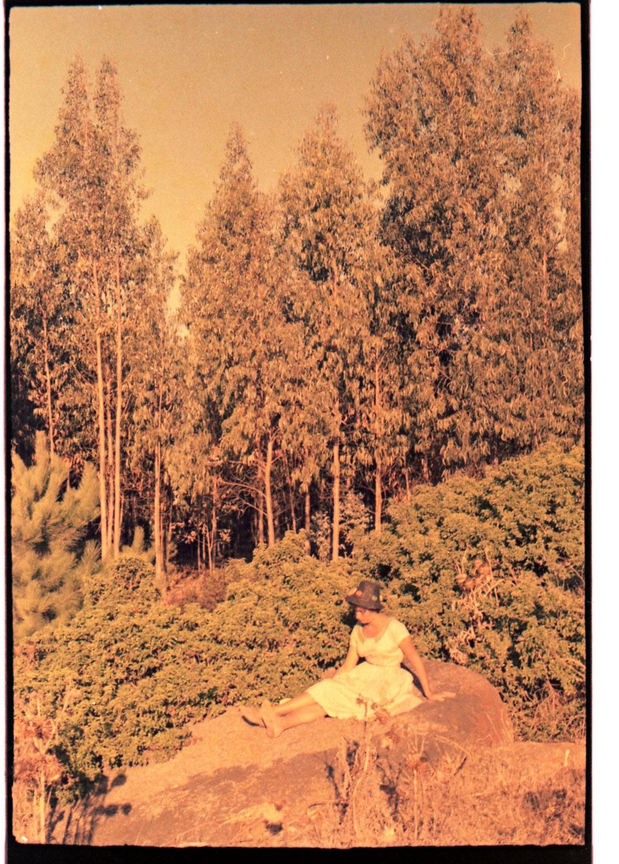 Enterreno - Fotos históricas de chile - fotos antiguas de Chile - El Arrayán en 1961