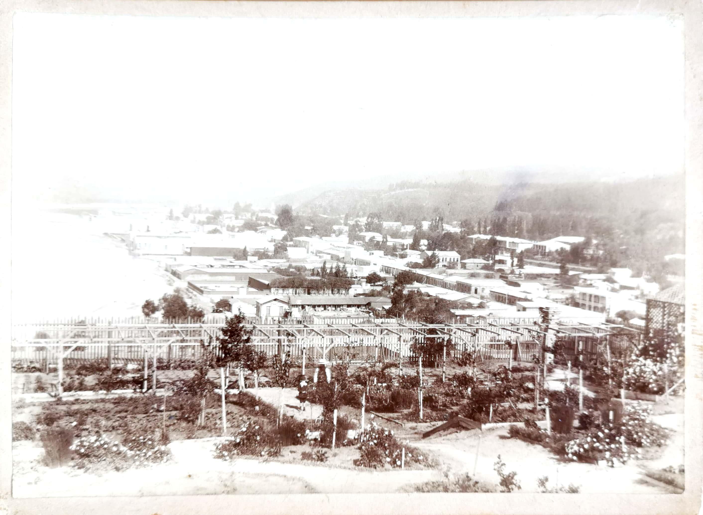 Enterreno - Fotos históricas de chile - fotos antiguas de Chile - Viña del Mar desde Cerro Castillo, 1904