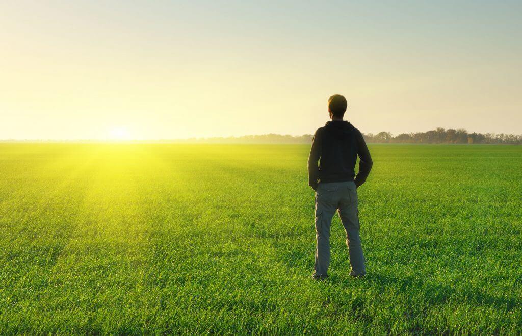 52410586 - man in meadow green meadow. conceptual scene.