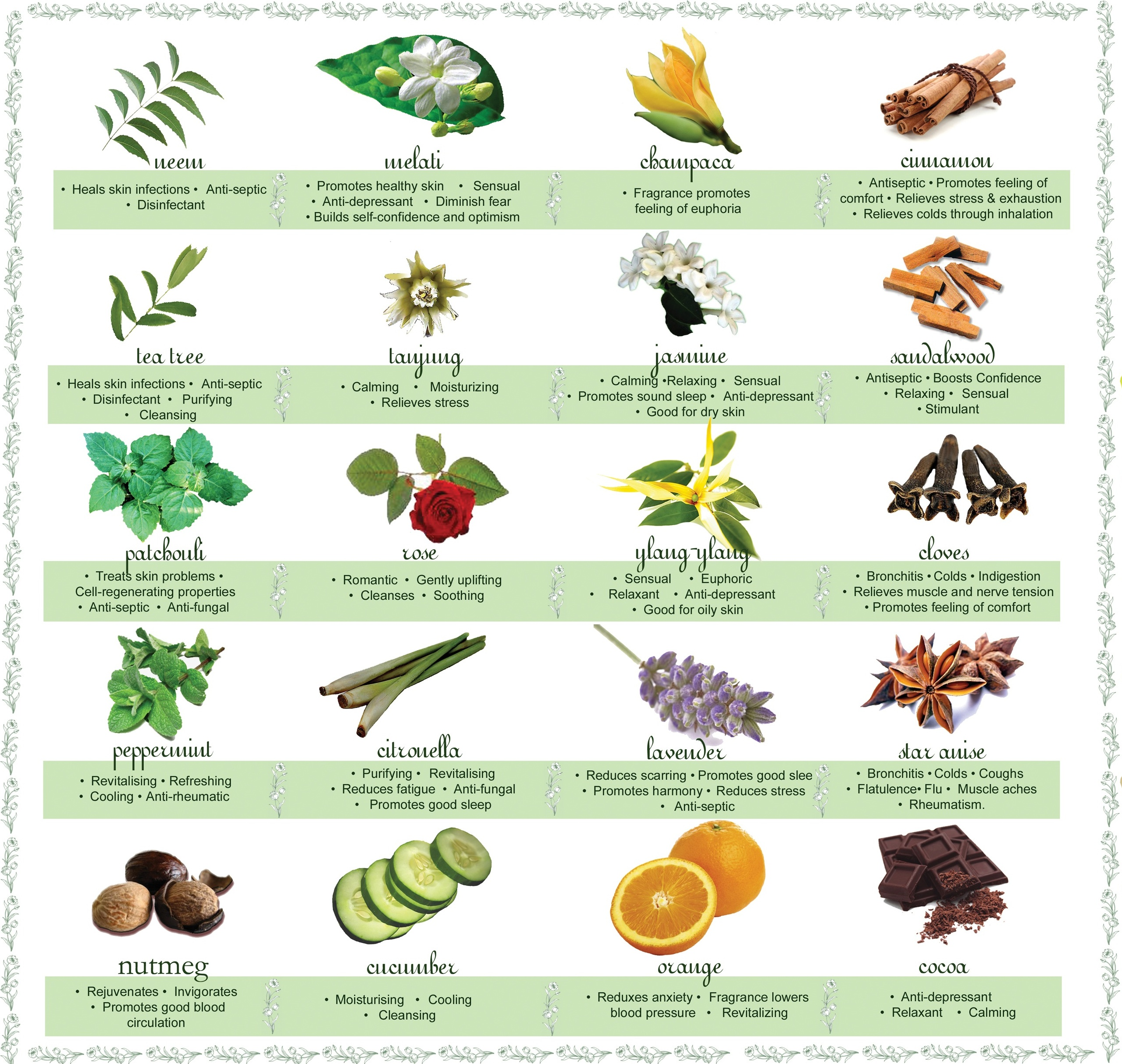 Handy dandy chart on the uses of different essential oils