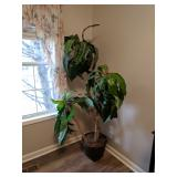 6ft Silk Tropical Tree