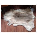 Living Room:  Wolf Pelt