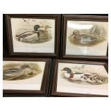 Vtg Duck Prints-John Gould