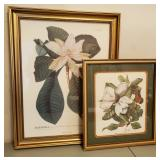 Framed Magnolia Prints 2