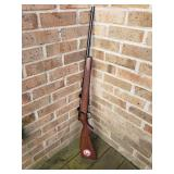 Savage Model 93 Bolt-Action Rimfire Rifle Gun