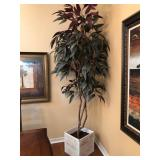 Faux Tree in Square White Wood Container - $150