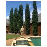 50% OFF! **Bent Tree North** Upscale Estate Sale! Elegance at Every Turn!!