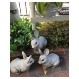Yard Rabbits