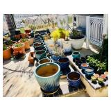 Lots of Outdoor Pots
