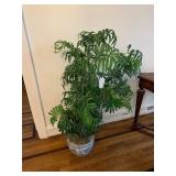 FAUX PLANT IN BLUE/WHITE FISH BOWL $45