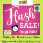 ONE DAY FLASH ESTATE SALE! Immaculate Furniture! Home Decor! American Flyer Trains & More!