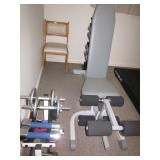 EXERCISE NEEDS WEIGHTS/BENCH TRUE TREADMILL