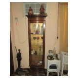 Another Lighted Curio