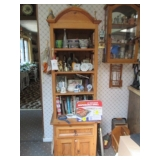 Book Display Case with Bottom Cabinet/Cookbooks and more