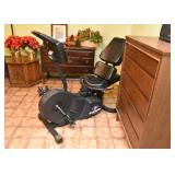 Stairmaster 3800 Exercise Bike