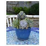 Blue Glazed Flower Pot with Artificial Succulents