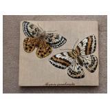 Fabric Artwork - Butterflies